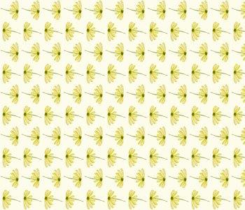 Summer-daisies-50f7